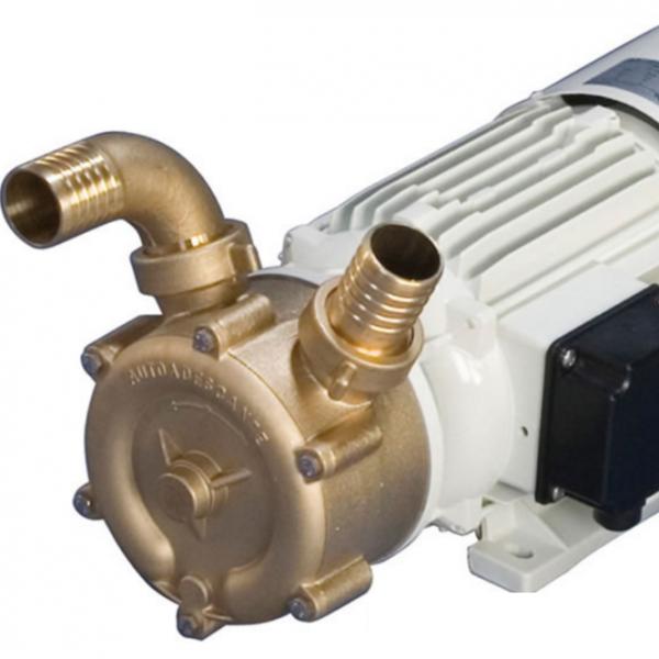 CEM Self Priming Bronze pump