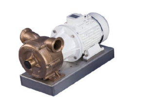 CEM - 070 Bronze self priming pump (the 070 comes on mounting plate)