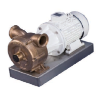 CEM - 070 Bronze self priming pump