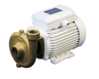 Picture of CEM B-CE (AC) Centrifugal Pump