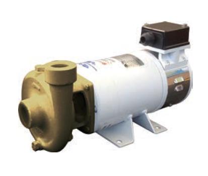 Picture of CEM B-CE (AC) Centrifugal Pump