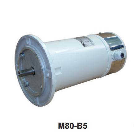 CEM DC Electric Motor model M80-B5